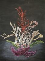 Sea Flowers I